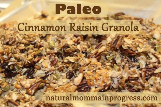 paleo cinnamon raisin granola
