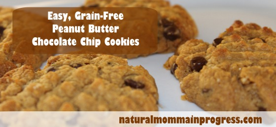 peanut butter chocolate chip cookies copy